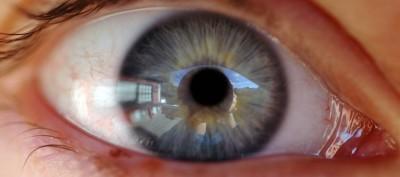 Details such as an eye